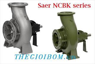 saer_ncbk