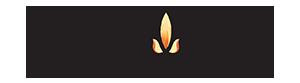 RÈM XUẤT KHẨU BÌNH MINH – công ty CP bảo tồn và phát triển Thêu Việt